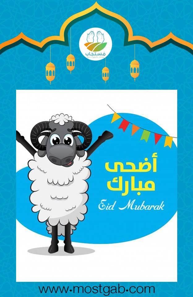 حالات واتس تهنئة عيد الأضحى المبارك